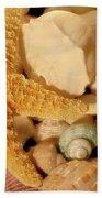 Starfish And Seashells Beach Towel