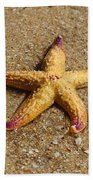 Starfish Beach Towel by Mamie Thornbrue