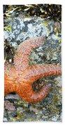Starfish Running Beach Towel