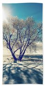 Stark Shadows Beach Towel