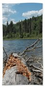 Steepbanks Lake The Fallen Beach Towel