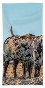 Steers In The Desert Beach Towel