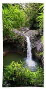Step Falls Pipiwail Trail 3 Beach Towel
