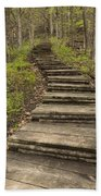 Step Trail In Woods 17 A Beach Towel