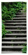 Steps With Ivy Beach Towel