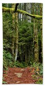 Sticking Out In The Rain Forest Beach Towel