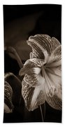 Still. Life. Colorless. Flowers. Beach Towel