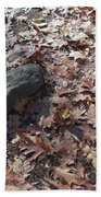 Stone And Leaves Beach Towel