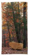 Stone Leaves And Trees Beach Towel