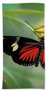 Butterfly, Stop And Smell The Flowers Beach Towel by Cindy Lark Hartman