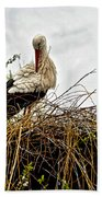 Stork Nest Beach Towel