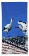 Storks Of Segovia Beach Towel