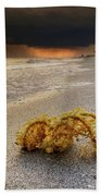 Storm And Sea Shell On Sanibel Beach Towel
