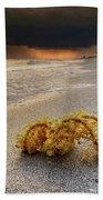 Storm And Sea Shell On Sanibel Beach Sheet