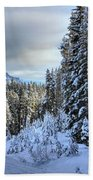 Storm Clouds Over Bow Valley Parkway Beach Towel