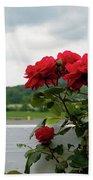 Stormy Roses Beach Sheet by Valeria Donaldson