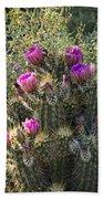 Strawberry Hedgehog Cactus  Beach Towel
