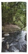 Stream In  Rainforest Beach Towel