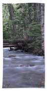 Stream In The Forest Beach Towel