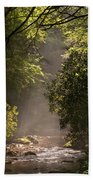 Stream Light Beach Towel