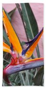 Strelitzia Double Bloom Beach Towel