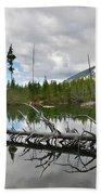 String Lake In Grand Tetons Beach Towel