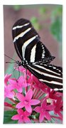 Striped Beauty - Butterfly Beach Towel