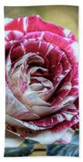 Striped Rose  Beach Towel