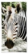 Stripes And Symmetry  Beach Towel