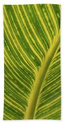 Stripey Leaf Beach Towel