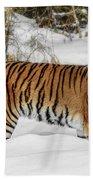 Stroll In The Snow Beach Towel