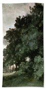 Study Of Trees Beach Towel by John Constable