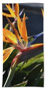 Stunning Bunch Of Flowers With Bright Orange Petals  Beach Towel