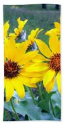 Stunning Wild Sunflowers Beach Towel
