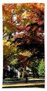 Suburban Autumn Beach Towel