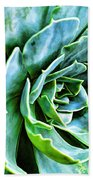 Succulents Beach Towel