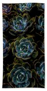 Succulent Beach Towel by Rod Sterling