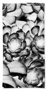 Succulents Monochrome Beach Towel