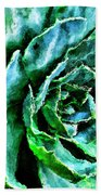 succulents Rutgers University Gardens Beach Towel