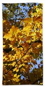 Sugar Maple Beach Towel