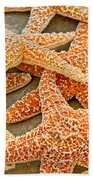 Sugar Starfish Beach Towel
