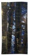 Sukkot II Stars 2015035  Beach Towel