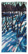 Sumac Snow Shadows Beach Towel