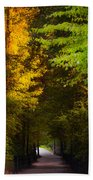 Summer And Fall Collide Beach Towel