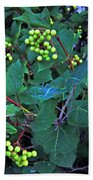 Summer Berries  Beach Towel