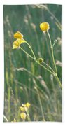 Summer Buttercups Beach Towel