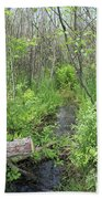 Summer Creek At Orion's Lake In Mi Beach Towel
