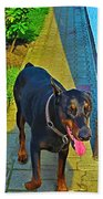 Summer Dog Day Beach Towel