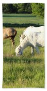 Summer Grazing Beach Towel
