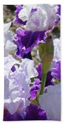 Summer Iris Garden Art Print White Purple Irises Flowers Baslee Troutman Beach Towel